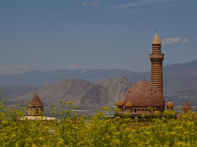 Tarihi İshak Paşa Sarayı Sarı Çiçeklerle Bir Başka Güzel