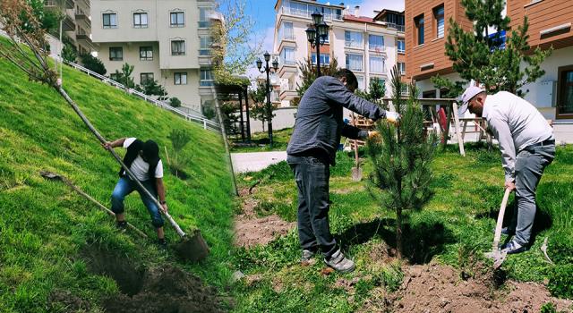 Ağaçlandırma seferberliğinde vatandaş ve belediye işbirliği
