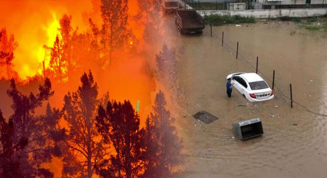 2021 yazında gelişen orman yangıları, sıcak hava dalgaları ve sel felaketleri
