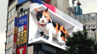 Tokyo'nun yeni gözdesi 3 boyutlu dev bir kedi