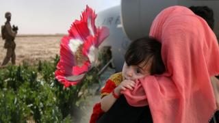 Venedik Film Festivali, Afgan sanatçıları nasıl etkilediğine odaklanacak
