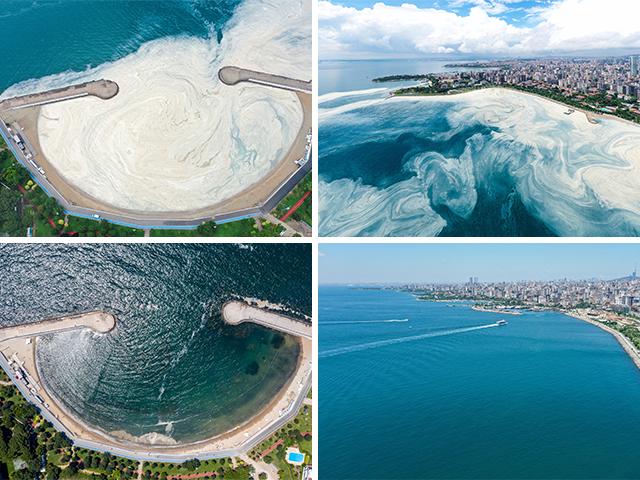 Marmara Denizi'nin İstanbul kıyılarında müsilaj, yok denilecek kadar azaldı
